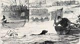Killer Sport. Victorian Style