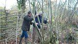 Chris Beardshaw and Stewart Milburn coppicing trees in the RSPB's Garston Wood