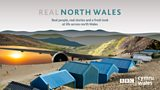 Real North Wales