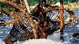 Congo: A River Journey in binaural audio