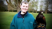 Animal Saints And Sinners - Banned Breeds, A Fire Detection Dog And A Harris Hawk