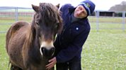 Animal Saints And Sinners - A Pony Saved Me From Myself And Drugs Raid