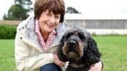 Lifeline - Canine Partners
