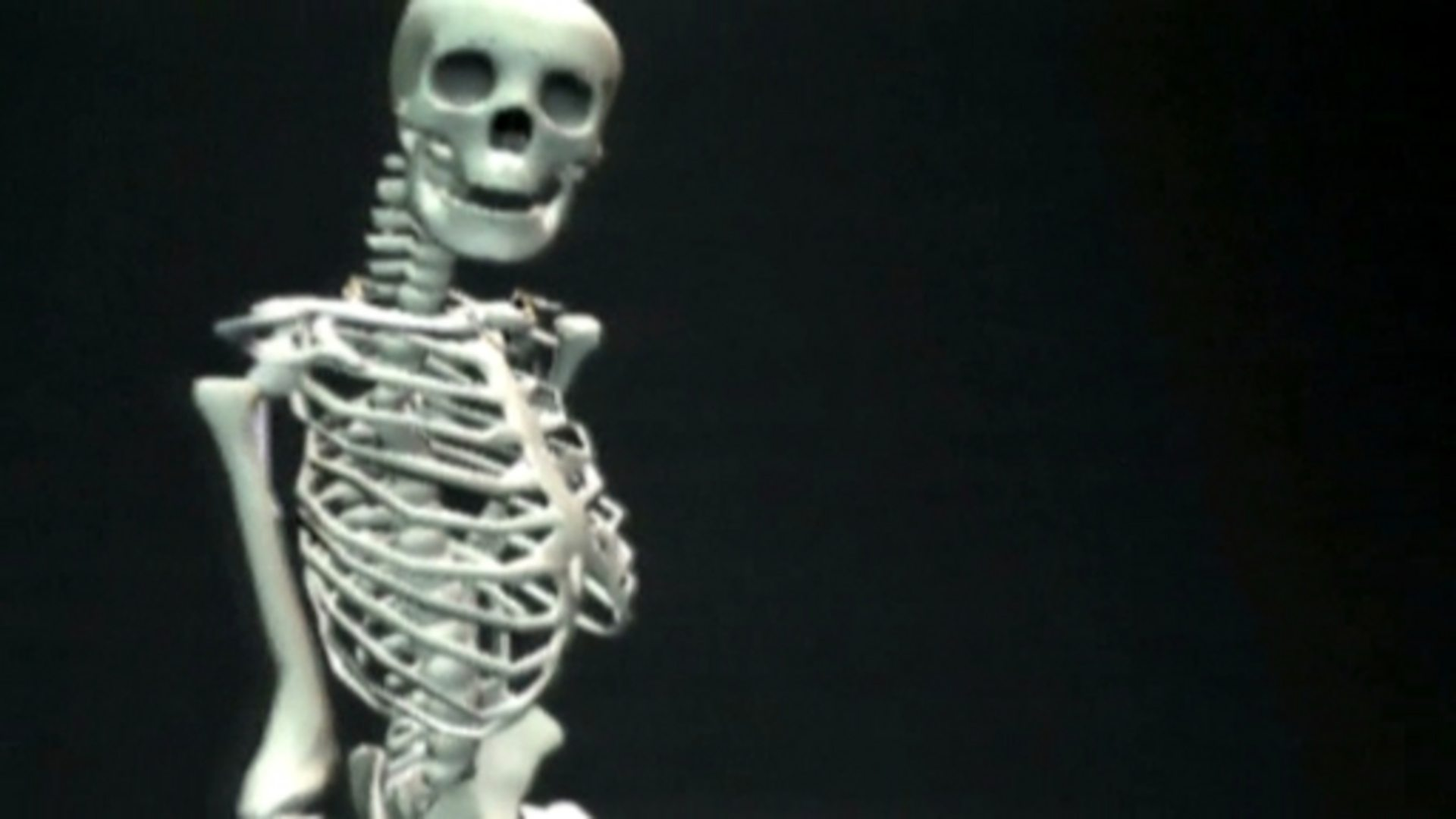 Bbc Two Science Clips Moving And Growing Skeletons