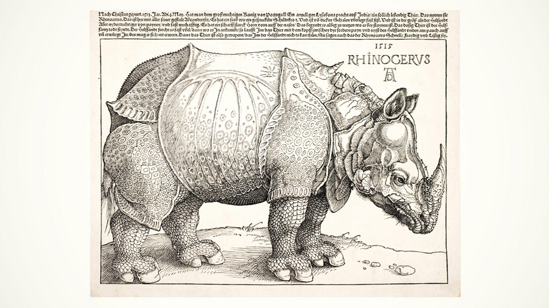 African Rhinoceros Rhino Large Fridge Magnet