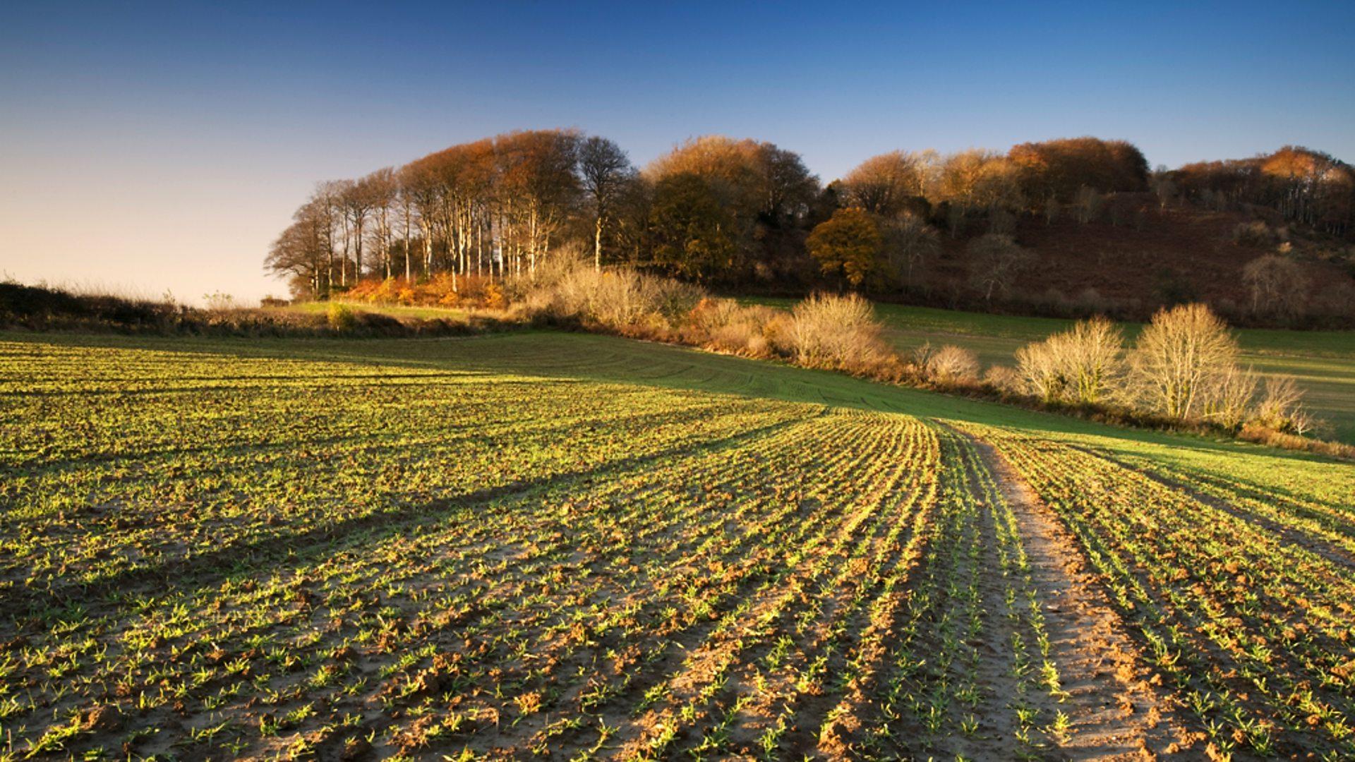 Resultado de imagen para em3 agriculture