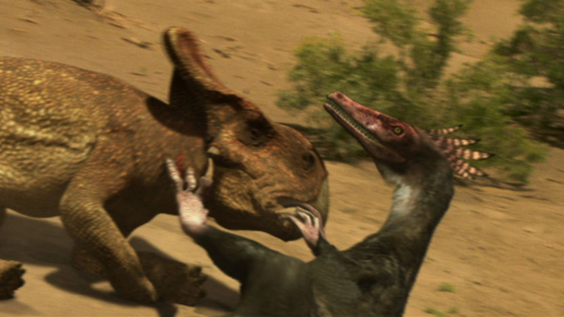 the truth about killer dinosaurs triceratops