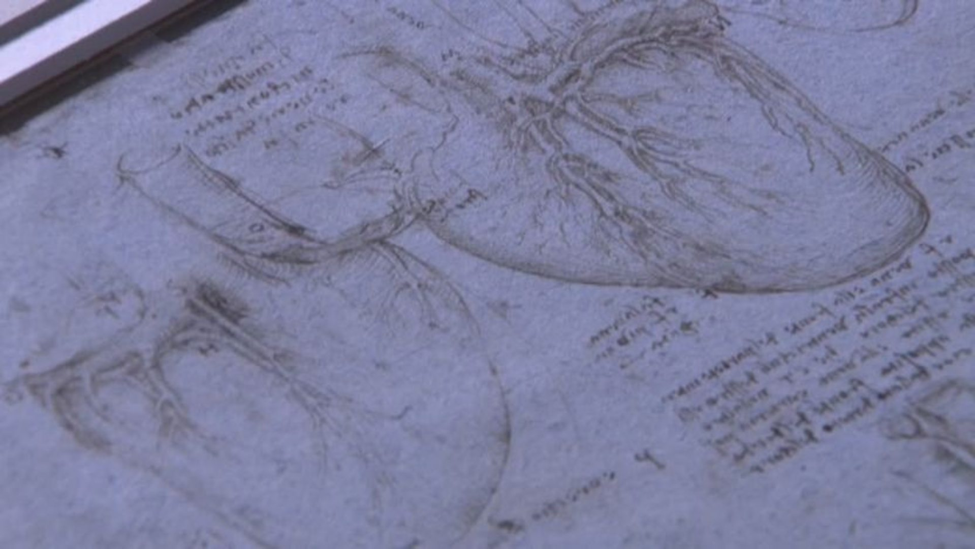 Bbc Four Heart Vs Mind What Makes Us Human Da Vinci And The