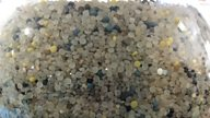 Nurdles: the manmade killers plaguing our oceans