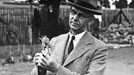 From little acorns: the origins of gardening programmes on the BBC