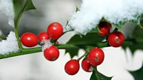 Get Involved Come and Sing: Come and Sing: Christmas Carols