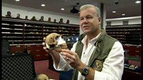 人類の祖先? 発掘された骨を研究者が解説