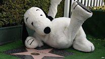 スヌーピーがハリウッドの星獲得 作者の隣で
