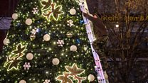 Christmas trees: The $4bn business