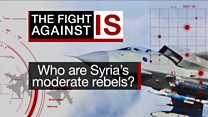 Who are Syria's moderate rebels?