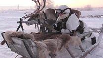 Russian soldiers train with reindeer