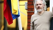 Why has Assange been holed up?