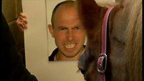 人の表情見分ける馬 英研究で明らかに