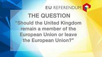 Key names and dates for the EU referendum campaign