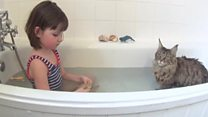 猫を飼ったら……重い自閉症と言われた娘に変化が