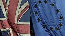 'Large segment of the British are authoritarian populist'