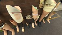 Unwanted artificial legs sent to Africa