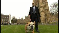 【英国民投票】EU離脱で国内法は変わるのか