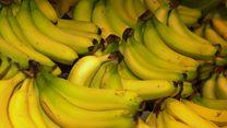 Is Banana-geddon upon us?