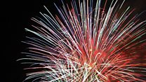 Pet lovers' petition to limit firework parties