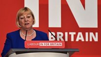 Shadow Europe minister apologises over 'horrible racist' comment
