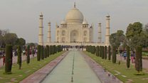 Why is the Taj Mahal turning green?