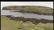 Isle of Man wildlife