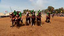 モロッコの女性騎馬チーム 男性優位の目線に挑み