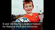 Bayley is mascot for Wales
