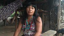 'Floresta de pé é minha mãe', diz indígena cuja tribo transferiu aldeia para afastar madeireiros