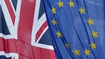 What happens after the EU Referendum?