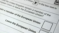 Your guide to voting in the EU referendum