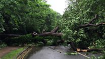 South East hit by overnight storm