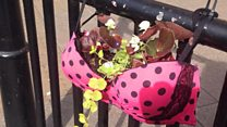 The women growing plants in their bras