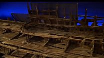 Unveiling of Mary Rose