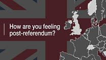 Post-Brexit poll: How do people feel about the referendum?