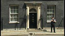 英首相官邸の猫ラリーは残留