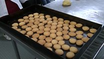 How to make fish biscuits