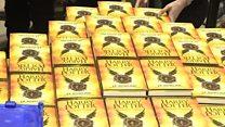 New Harry Potter script enchants fans