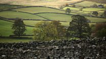 In praise of Yorkshire