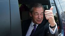'My role was to act as Nigel Farage's lubricant'