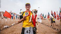Stray dog joined extreme runner during China race