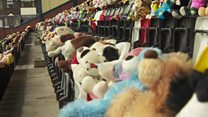 Teen fills stadium with teddy bears