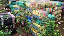 В Колумбии найдены 5 тонн кокаина