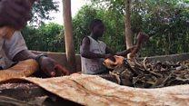 Mtindo wa kuvalia magome ya miti Uganda
